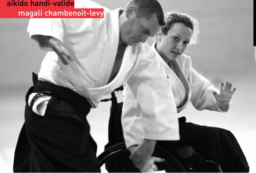 aikido et handicap.PNG