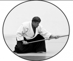 aikido,montlucon asptt,luc bouchareu