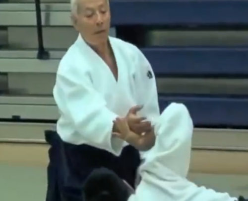 aikido montlucon asptt,endo sensei