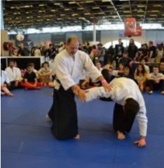 aikido japan expo.PNG