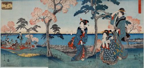 aikido,montlucon asptt,hanami,sakura