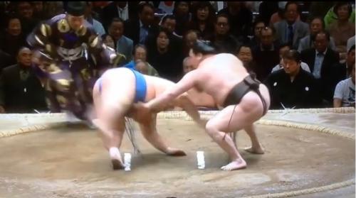 aikido,aikido montlucon asptt,sumo,hakuho