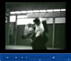 aikido,montlucon asptt,mitsunari kanai