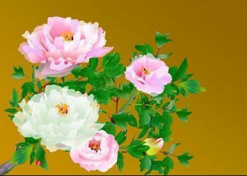 si-vous-regardez-près-you-can-dire qui-chaque-fleur-pétale-est-son-propre-shape.jpg