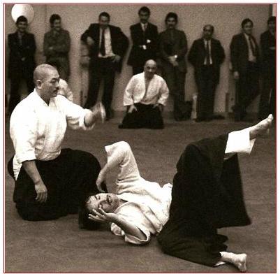 aikido,aikido montlucon asptt,michel hamon